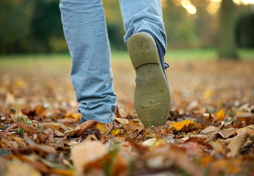 Foto von Füßen eines Mannes, der durch Herbstlaub geht