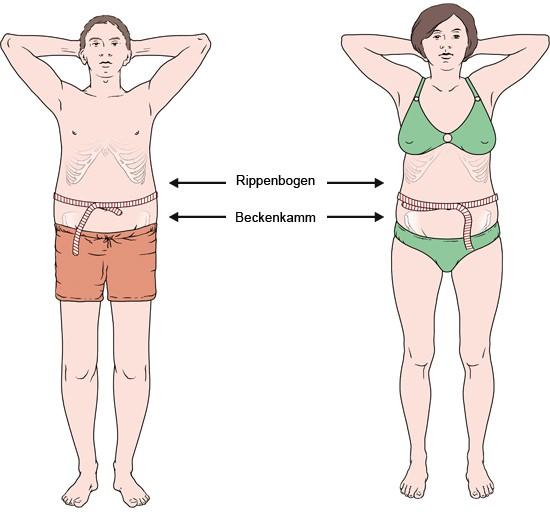 Männer bodyindex Polizei BMI